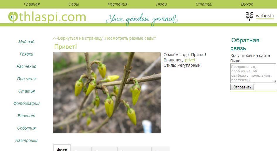 thlaspi.com портал для садоводов